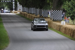 Goodwood Festival of Speed 2014 (1)