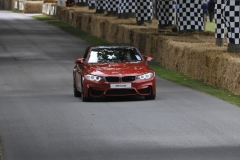 Goodwood Festival of Speed 2014 (12)