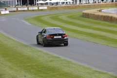 Goodwood Festival of Speed 2014 (20)