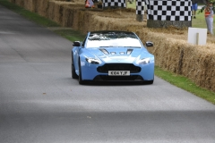 Goodwood Festival of Speed 2014 (21)