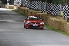 Goodwood Festival of Speed 2014 (25)