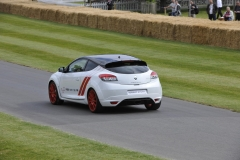 Goodwood Festival of Speed 2014 (27)