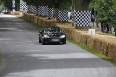 Goodwood Festival of Speed 2014 (28)
