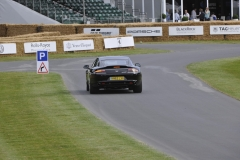 Goodwood Festival of Speed 2014 (31)