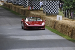 Goodwood Festival of Speed 2014 (33)