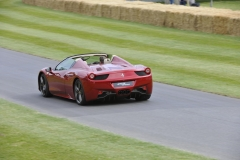 Goodwood Festival of Speed 2014 (34)