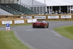 Goodwood Festival of Speed 2014 (35)