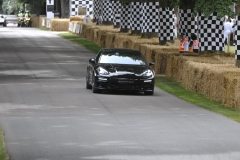 Goodwood Festival of Speed 2014 (36)