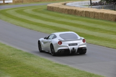Goodwood Festival of Speed 2014 (42)