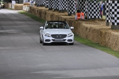 Goodwood Festival of Speed 2014 (44)