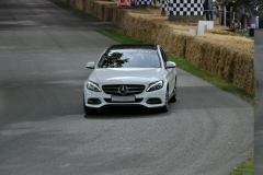 Goodwood Festival of Speed 2014 (45)