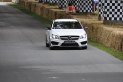 Goodwood Festival of Speed 2014 (48)