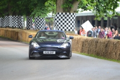 Goodwood Festival of Speed 2016 (6)