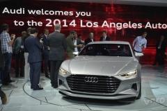 Los Angeles Auto Show 2014 (30)