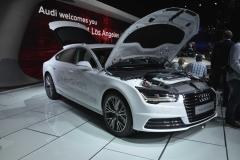 Los Angeles Auto Show 2014 (31)