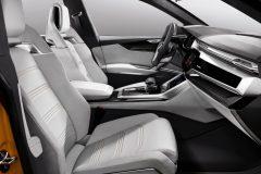 Audi Q8 sport concept 2017 (15)