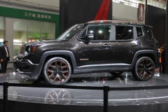 Beijing Auto Show 2014 (1)