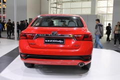 Beijing Auto Show 2014 (30)