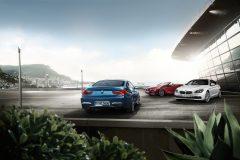 BMW 6 Serie Coupé 2017 (4)