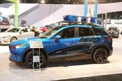 Chicago Auto Show 2013 (15)