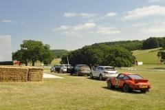 Goodwood Festival of Speed 2013 (17)