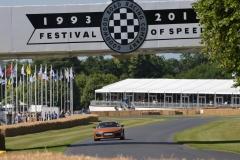 Goodwood Festival of Speed 2013 (18)