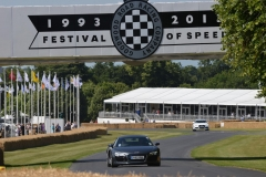 Goodwood Festival of Speed 2013 (19)