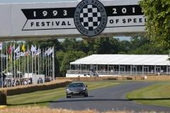 Goodwood Festival of Speed 2013 (22)