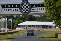 Goodwood Festival of Speed 2013 (23)