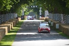 Goodwood Festival of Speed 2013 (28)