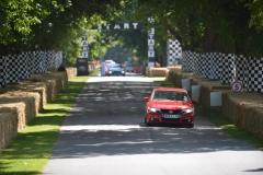 Goodwood Festival of Speed 2013 (30)
