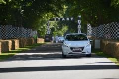 Goodwood Festival of Speed 2013 (33)