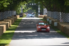 Goodwood Festival of Speed 2013 (34)