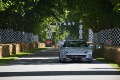 Goodwood Festival of Speed 2013 (39)