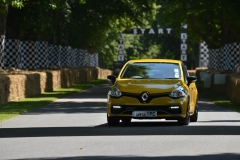Goodwood Festival of Speed 2013 (42)