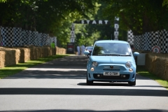 Goodwood Festival of Speed 2013 (43)