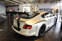 Goodwood Festival of Speed 2013 (8)