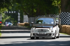Goodwood Festival of Speed 2013 (93)