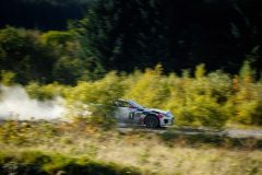 Jaguar_F-TYPE_Rally_Special_08_121118