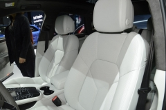 Los Angeles Auto Show 2013 (13)