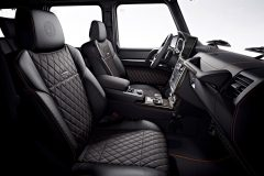 Mercedes-AMG G 65 Final Edition 2017