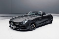 Mercedes-AMG GT C Roadster Edition 50 2017 (5)