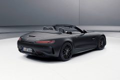 Mercedes-AMG GT C Roadster Edition 50 2017 (6)