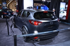 New York International Auto Show 2014 (16)
