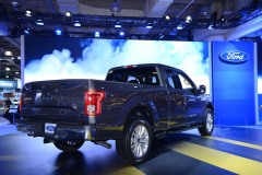 New York International Auto Show 2014 (19)