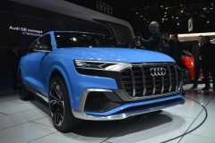 North American International Auto Show 2017 (6)