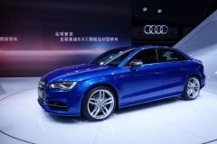 Shanghai Motor Show 2013 (13)