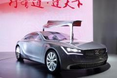 Shanghai Motor Show 2013 (20)