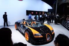 Shanghai Motor Show 2013 (52)