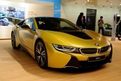 Shanghai Motor Show 2017 (5)